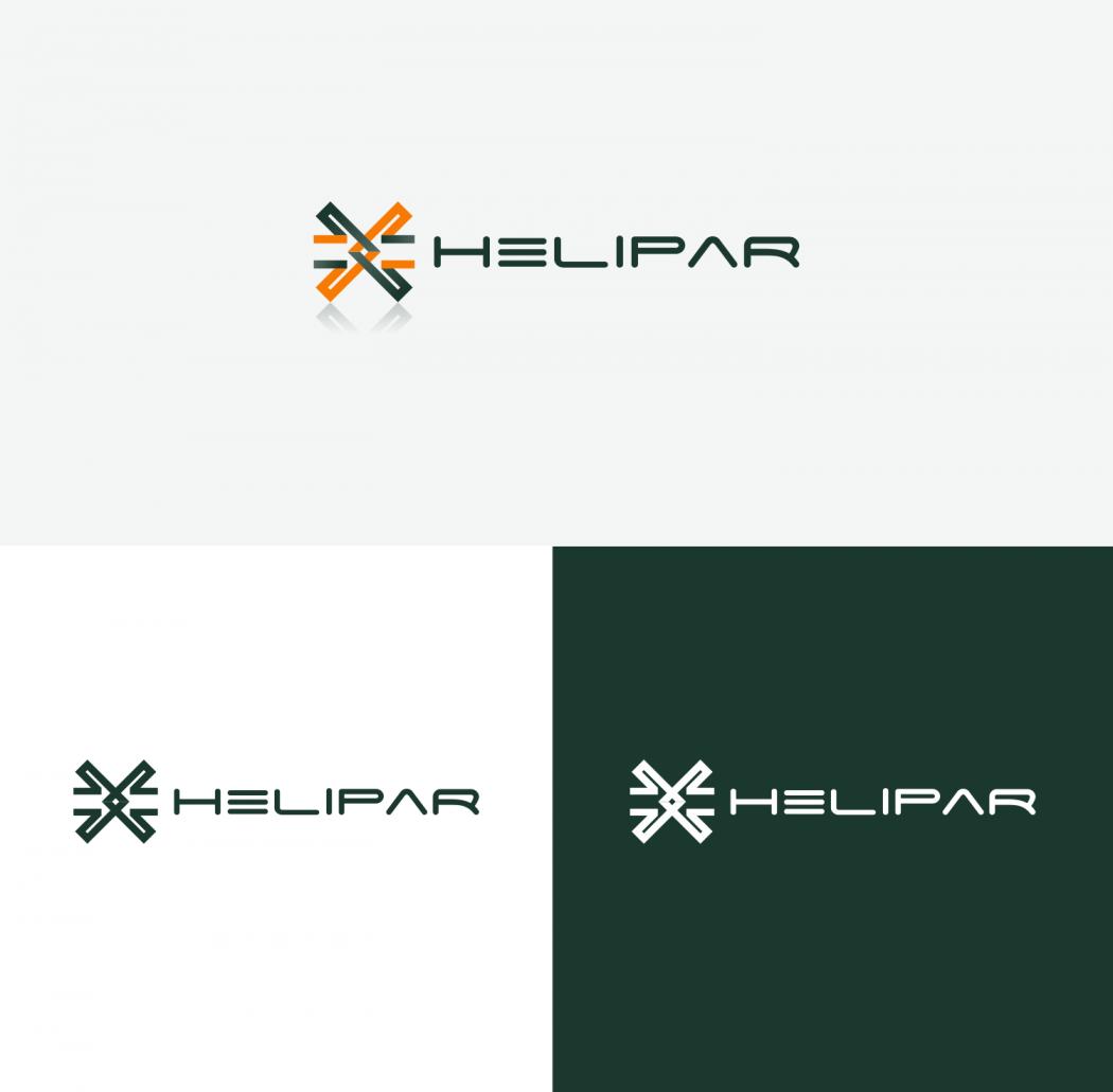 logotipo e identidade visual para empresa de aviação
